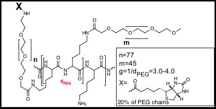 pll20g3pegbiotin20