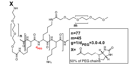 pll20g3pegbiotin50